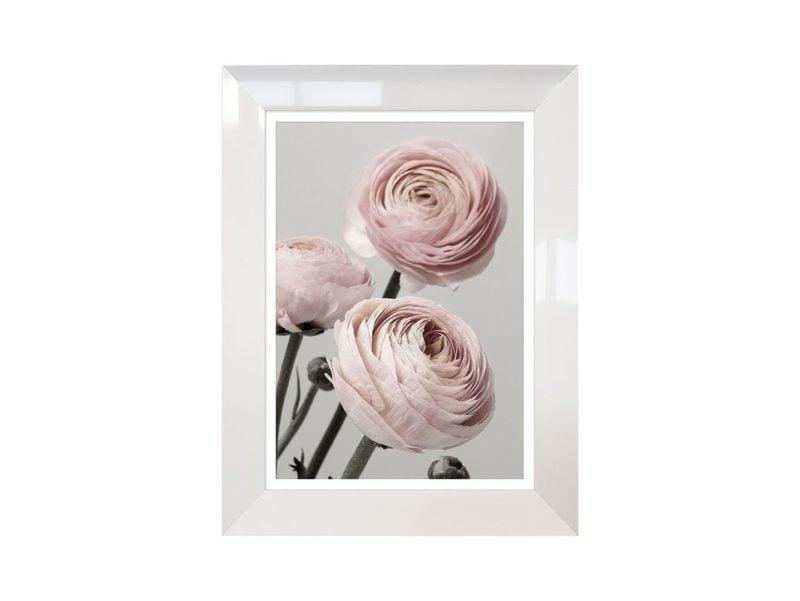 Obraz Roses