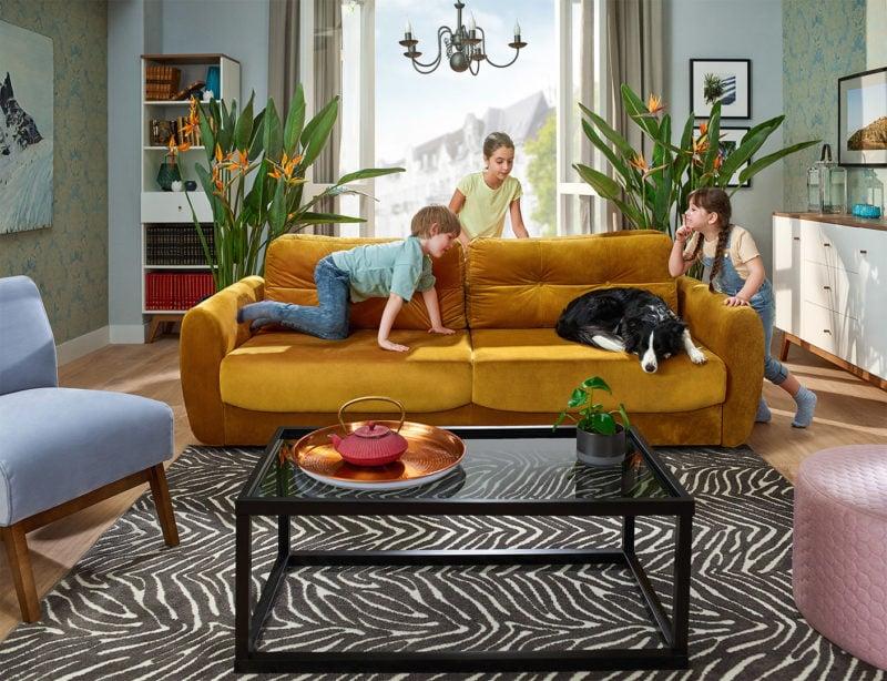 Pies na kanapie! Wybierz meble do zadań specjalnych